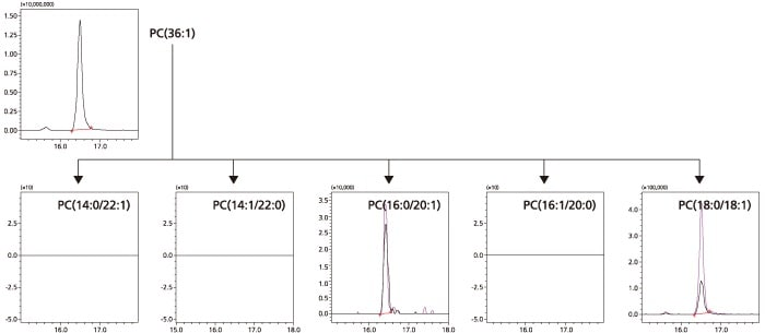 LC/MS/MS MRM Library for Phospholipid Profiling